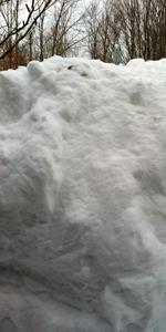 hen-house-snow